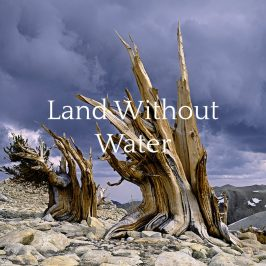 Land Without Water Portfolio