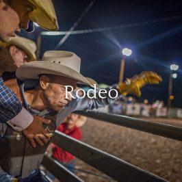 Rodeo Portfolio